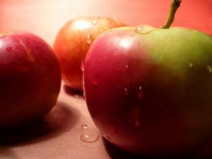 Все ли мы знаем о яблоках?