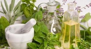 Лечение травами: особенности