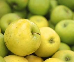 Яблоки для нашего здоровья
