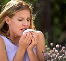 Аллергия и ее разновидности