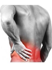 Что такое остеохондроз и как его избежать?