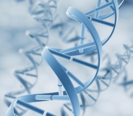 перспективы в прогнозировании и раннем обнаружении рака